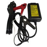 Wet cell battery charger,